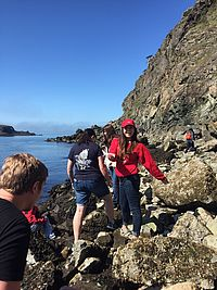 Natalie Hall, biology/pre-physical therapy major, visits the tide pools at Rosario Beach at the base of Sares Head on Sabbath afternoon.