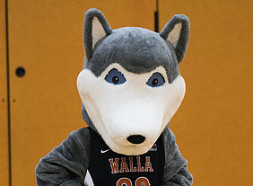 Be there to cheer on your favorite WWU team alongside Wally the wolf at their next scheduled game by visiting UWolves.com.