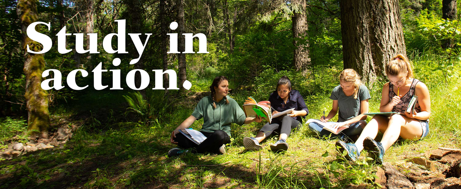 WWU students study their biology lesson along a creek bank.