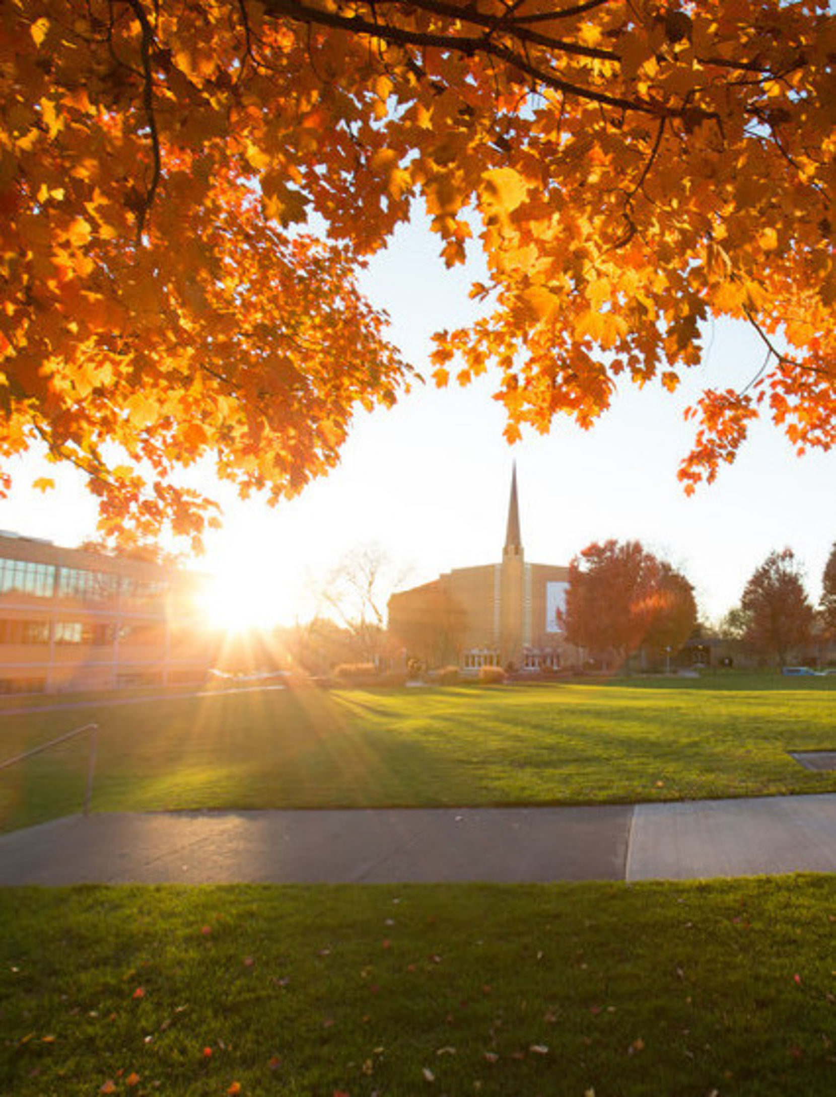 The sun shines through fall leaves on a tree with the University Church in the background.